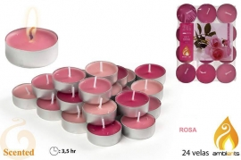 Candele profumate tealight rose Ambients x 24